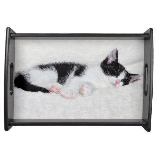 Sleeping kitten serving tray