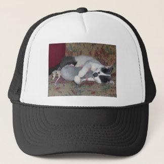 Sleeping Kitten Trucker Hat