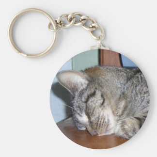 sleeping kitty angel keychain