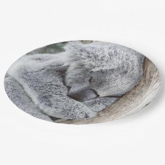 sleeping koala baby2 paper plate