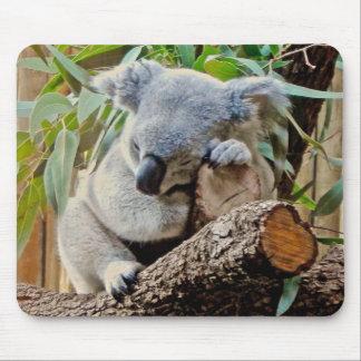 Sleeping Koala Bear Mouse Pad