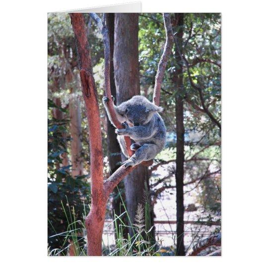 Sleeping Koala Bear ~ Notecard