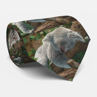 Sleeping Koala Bear Tie