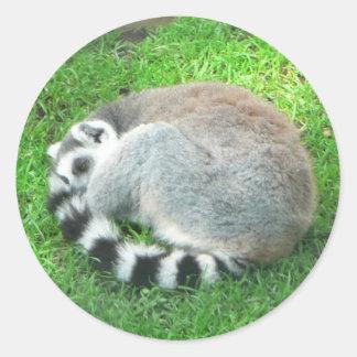 Sleeping Lemur On Grass Classic Round Sticker