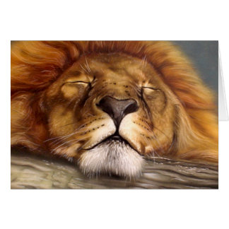 Sleeping Lion Card