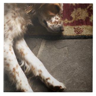 Sleeping Llewelyn setter Tile