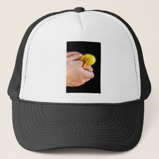 Sleeping newborn duckling in human hands trucker hat
