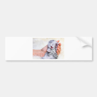 Sleeping newborn  silver tabby cat in hand bumper sticker