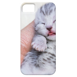 Sleeping newborn  silver tabby cat in hand iPhone 5 case