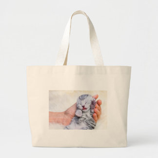 Sleeping newborn  silver tabby cat in hand large tote bag