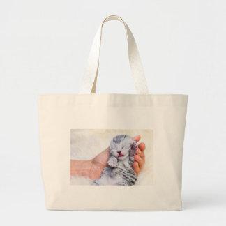 Sleeping newborn  silver tabby cat in hand large tote bag
