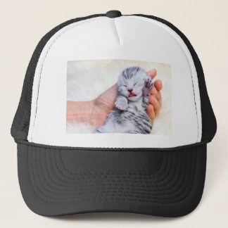 Sleeping newborn  silver tabby cat in hand trucker hat