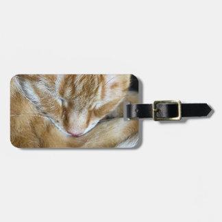 Sleeping orange tabby cat luggage tag