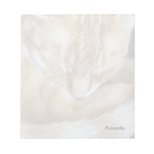 Sleeping orange tabby cat notepad