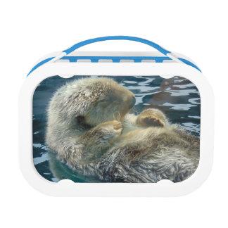 Sleeping Otter Lunchbox