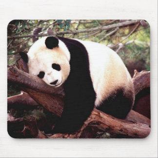 Sleeping Panda Mouse Pad