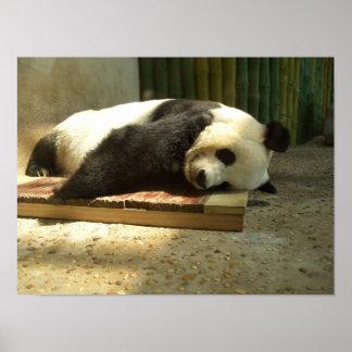 Sleeping panda poster