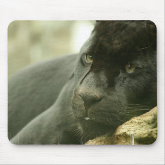Sleeping Panther Mouse Pad