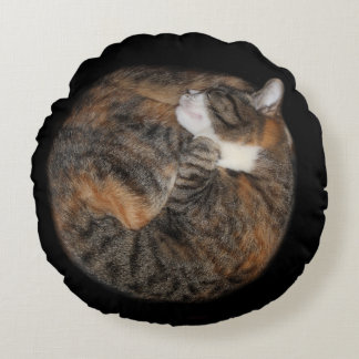 Sleeping patched tabby round pillow