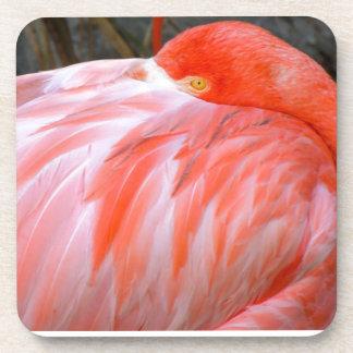 Sleeping Pink Flamingo Coaster