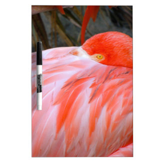 Sleeping Pink Flamingo Dry Erase Board