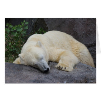 Sleeping Polar Bear Card