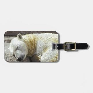 Sleeping Polar Bear Luggage Tag