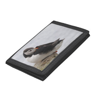 Sleeping Puffin Tri-fold Wallet