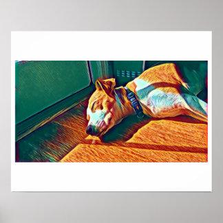 Sleeping Pup Poster