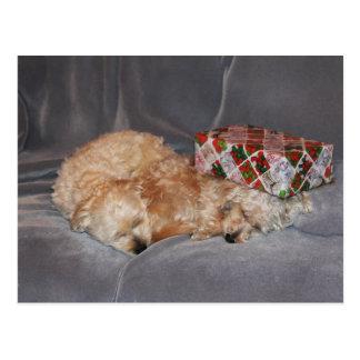 Sleeping puppies holiday postcard