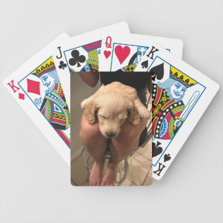Sleeping Puppy Bicycle Playing Cards