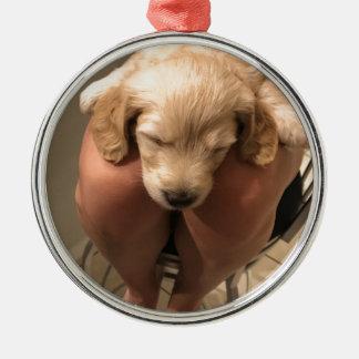 Sleeping Puppy Metal Ornament