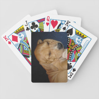 Sleeping puppy playing cards