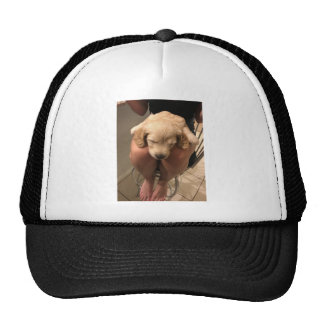Sleeping Puppy Trucker Hat