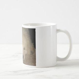 Sleeping Pyr Coffee Mug