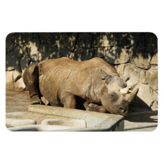 Sleeping Rhino Rectangular Photo Magnet