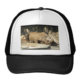Sleeping Rhino Trucker Hat