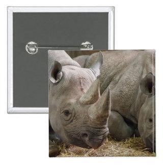 Sleeping Rhinos Pin