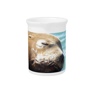 SLEEPING SEA LION BEVERAGE PITCHERS