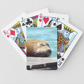 SLEEPING SEA LION BICYCLE PLAYING CARDS