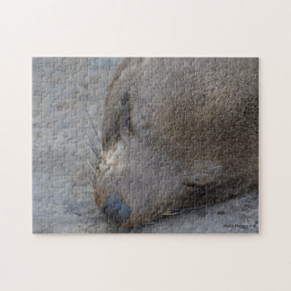 Sleeping Sea lion Jigsaw Puzzle