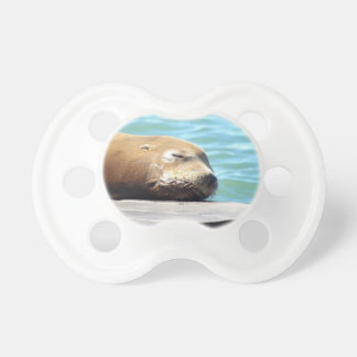 SLEEPING SEA LION PACIFIER
