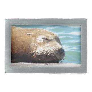 SLEEPING SEA LION RECTANGULAR BELT BUCKLE