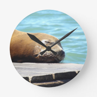 SLEEPING SEA LION ROUND CLOCK