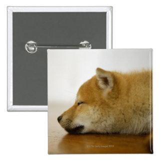 Sleeping Shiba-ken 3 2 Inch Square Button