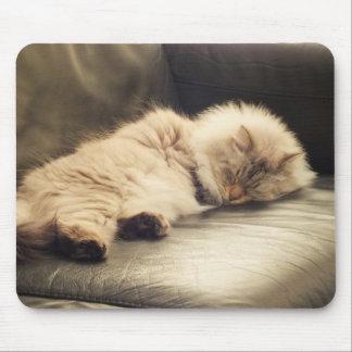 Sleeping Siberian Cat Mousepad