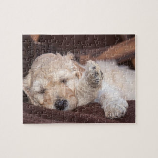 Sleeping Standard Poodle puppy Jigsaw Puzzle