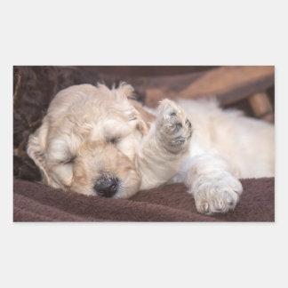 Sleeping Standard Poodle puppy Sticker