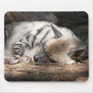 sleeping striped hyena mouse pad