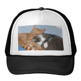 Sleeping Sweeties Trucker Hat